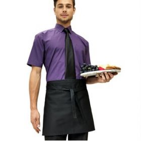 PR107 Premier Short bar apron
